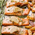 Pan lined with baked salmon