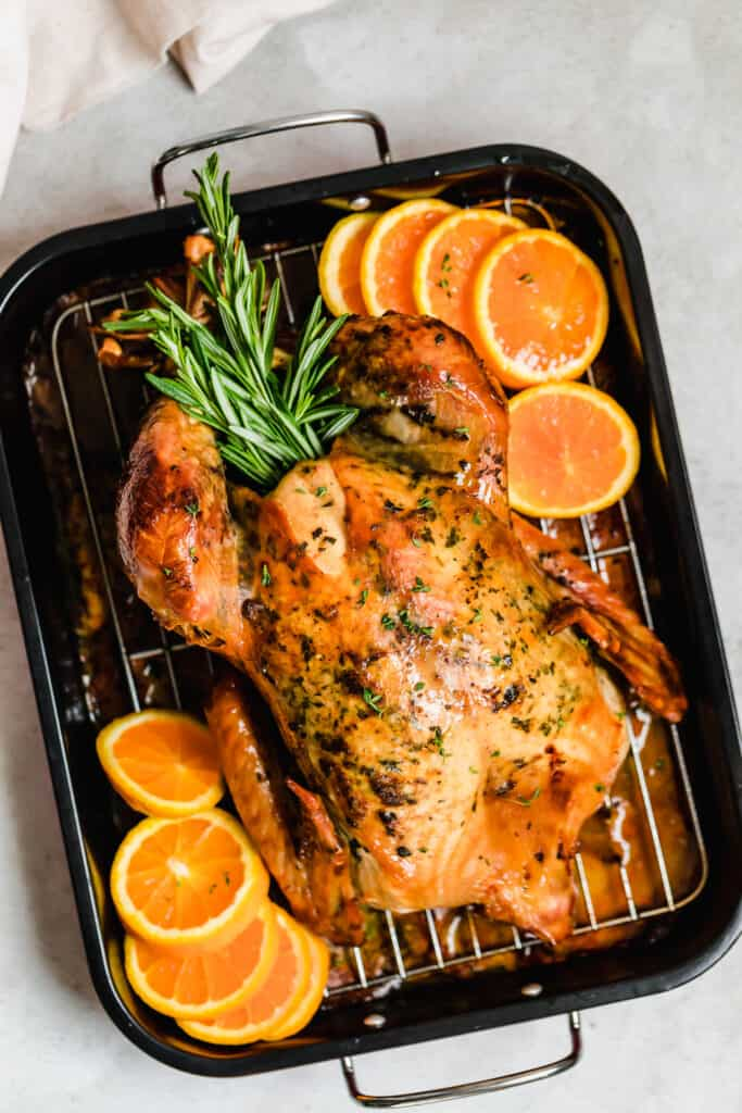 Roasted turkey in a pan with rosemary and orange slices.
