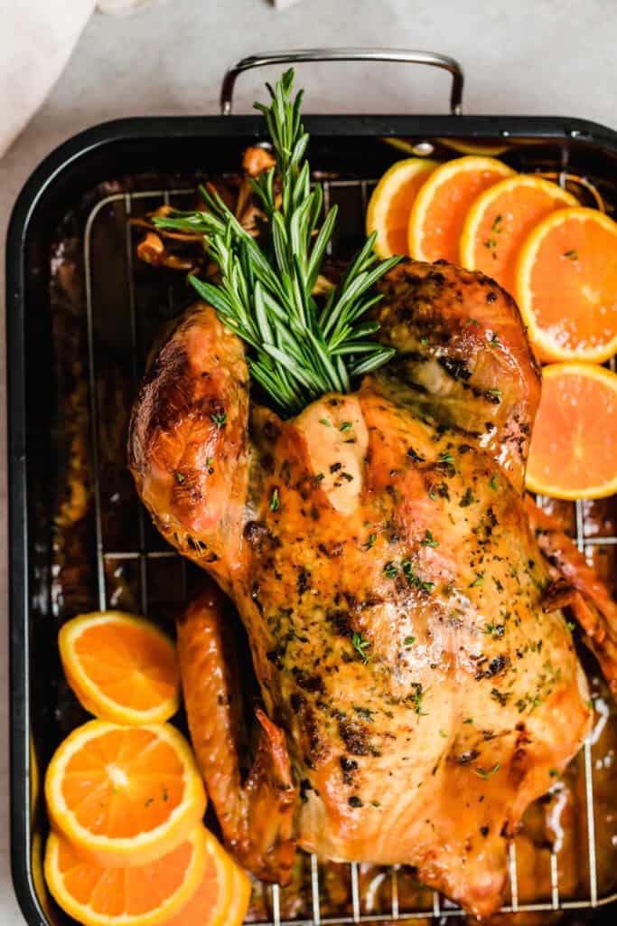 overhead shot of a whole roasted turkey on a roasting pan