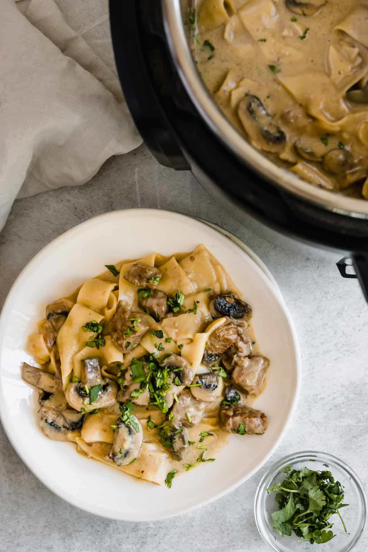 A Plate of Beef Stroganoff Beside a Pressure Cooker Filled with the Rest