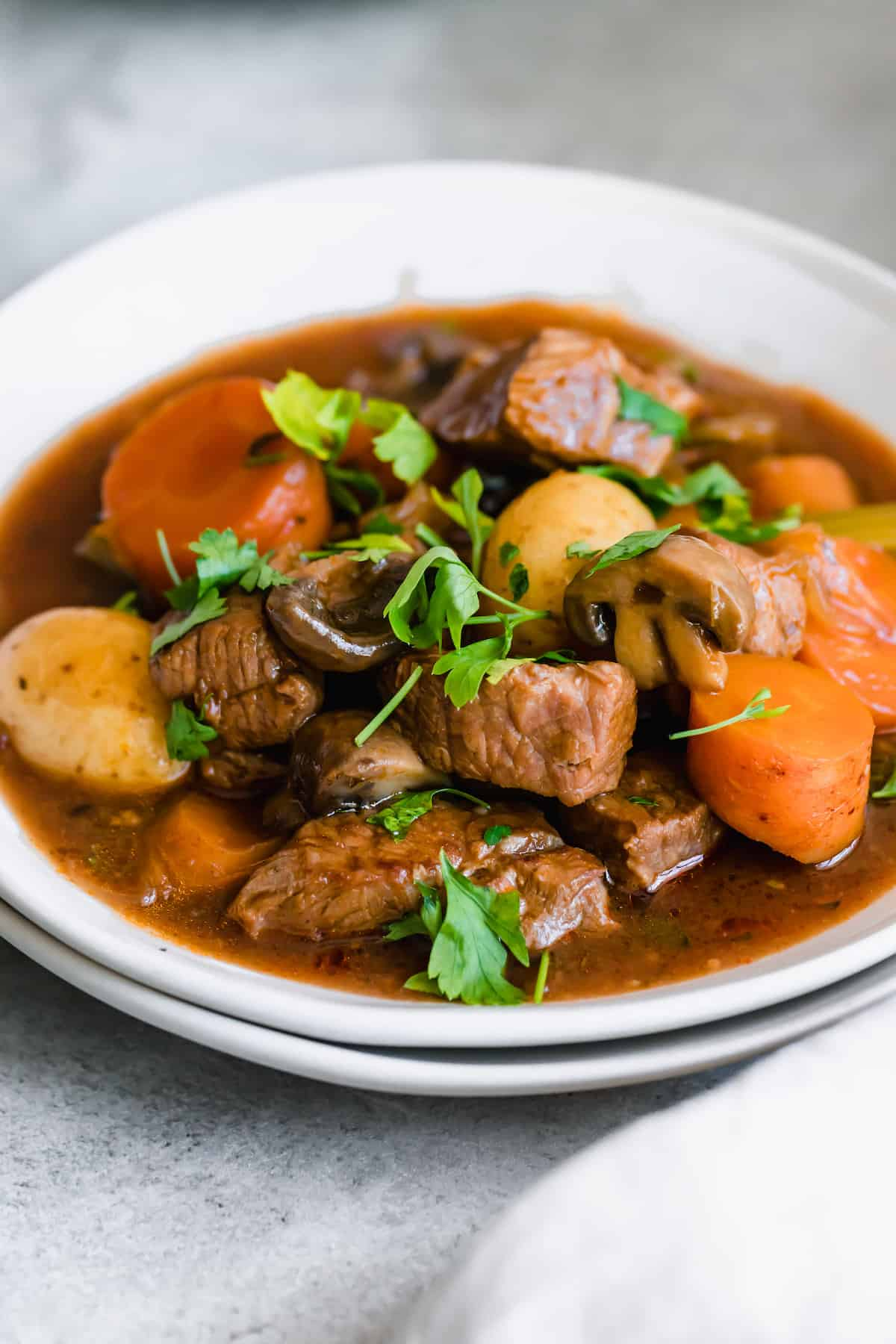 A white bowl of Guinness Beef Stew with carrots and potatoes with fresh herbs.