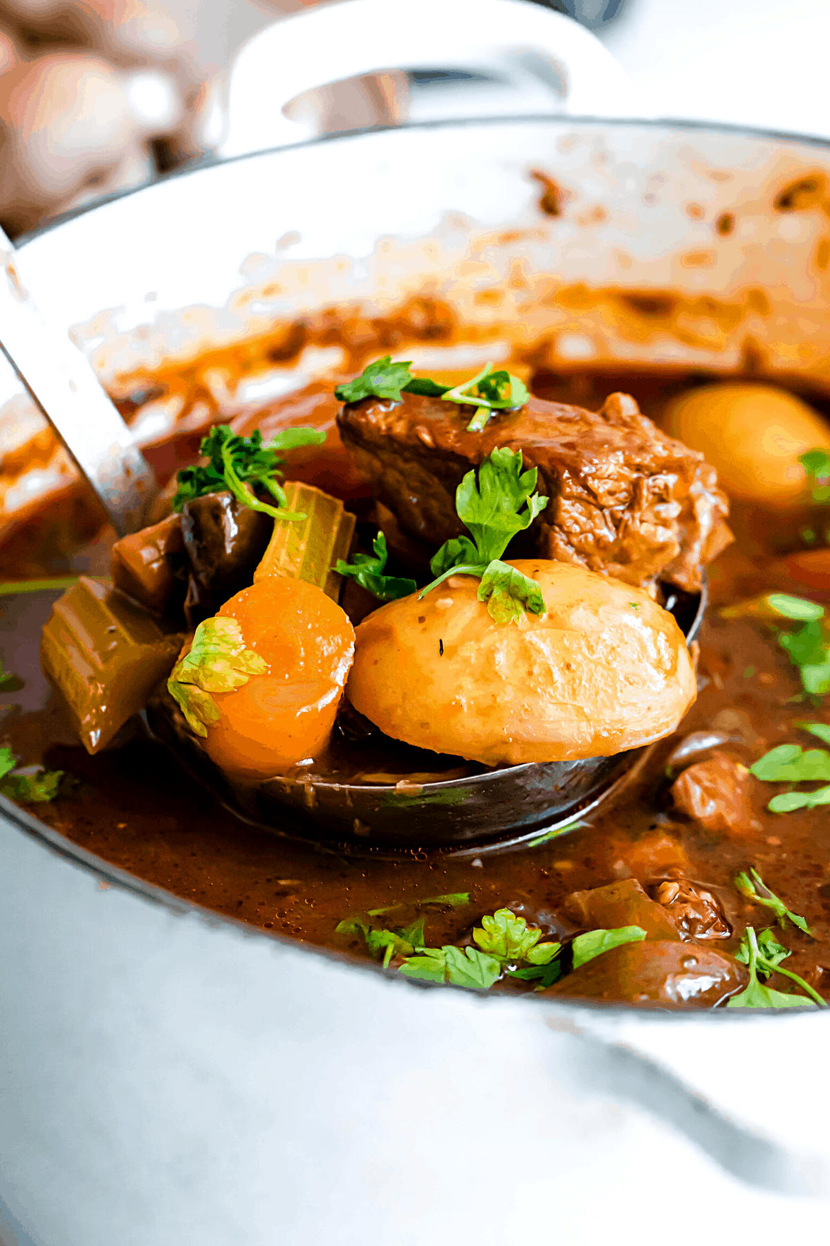 ladling out beef stew from a dutch oven
