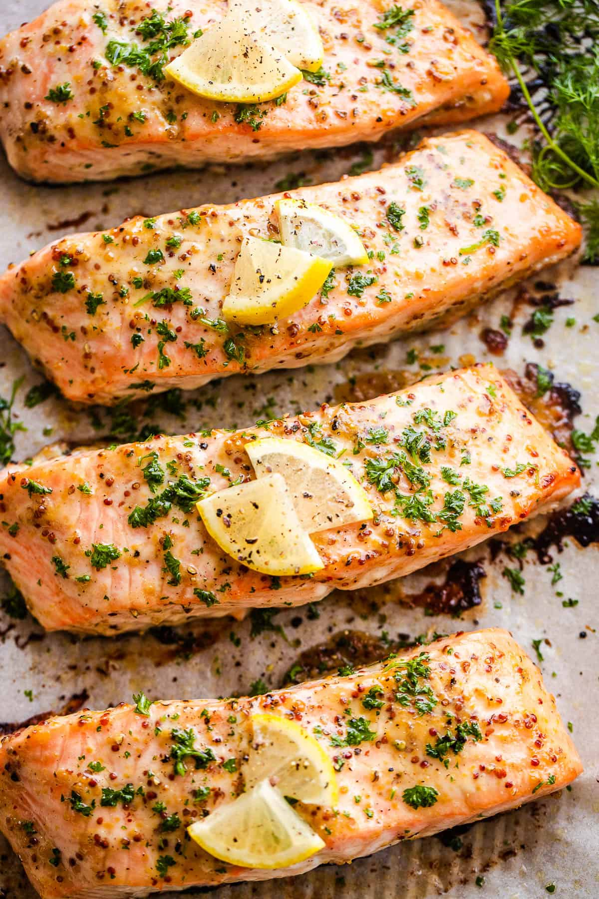 four baked maple mustard salmon fillets on a baking sheet