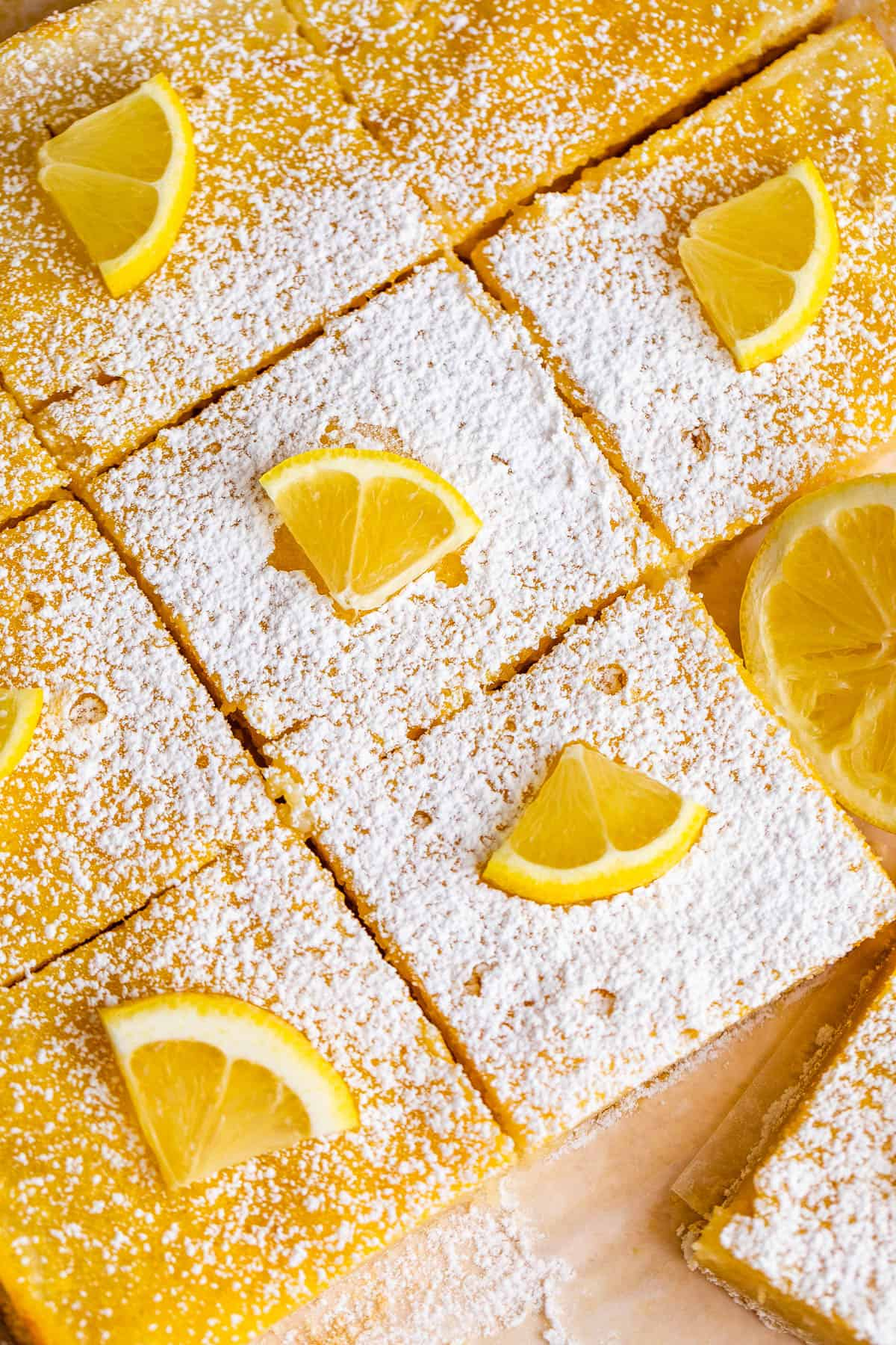 close up of cut lemon squares dusted with powdered sugar and topped with lemon slices