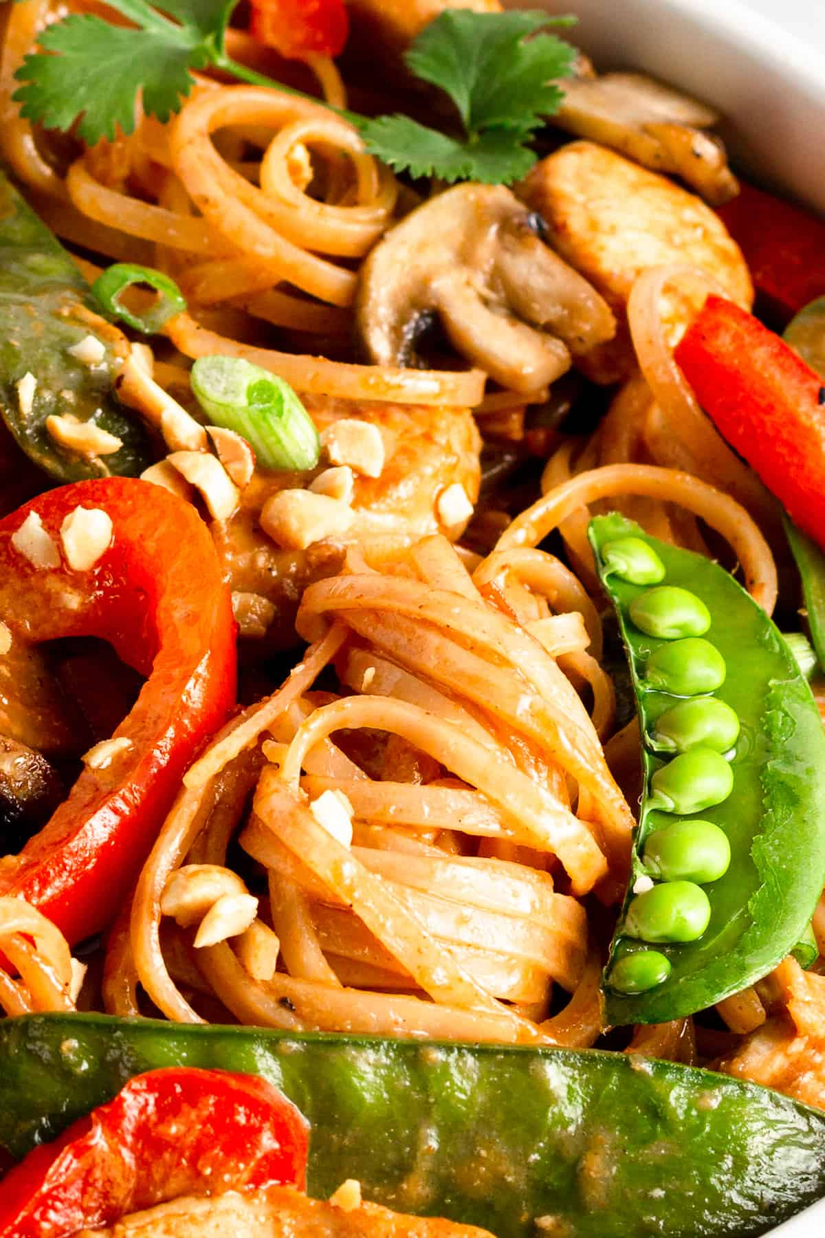 A Close-Up Image of Chicken Lo Mein with Veggies