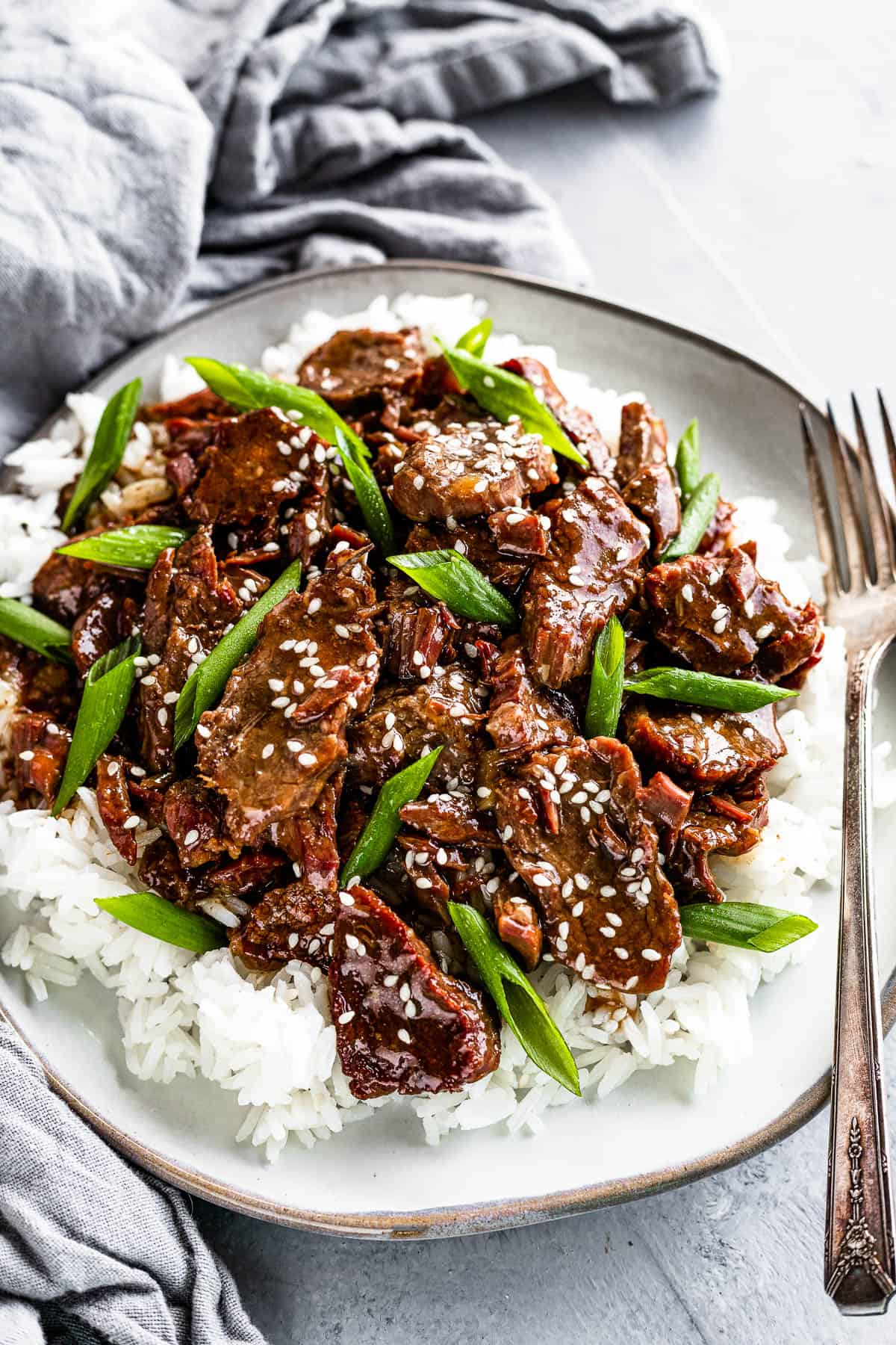 A Plate of Instant Pot Mongolian Beef with Green Onions over Rice