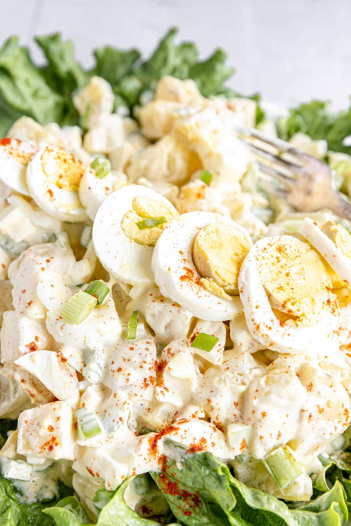 Garnishes and a Line of Hard-Boiled Egg Slices on Top of a Creamy Potato Salad