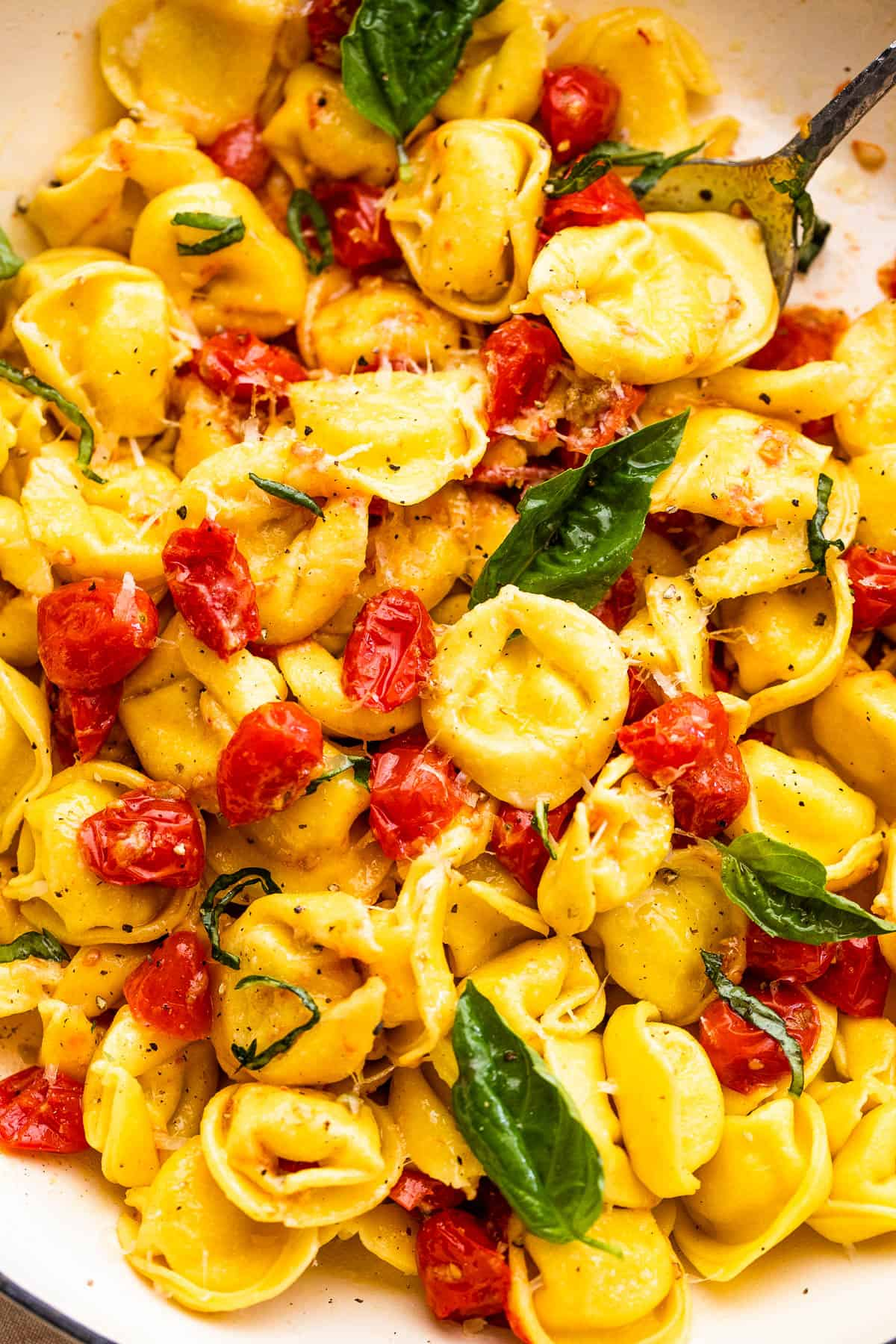 tortellini pasta tossed with cherry tomatoes and garnished with basil leaves